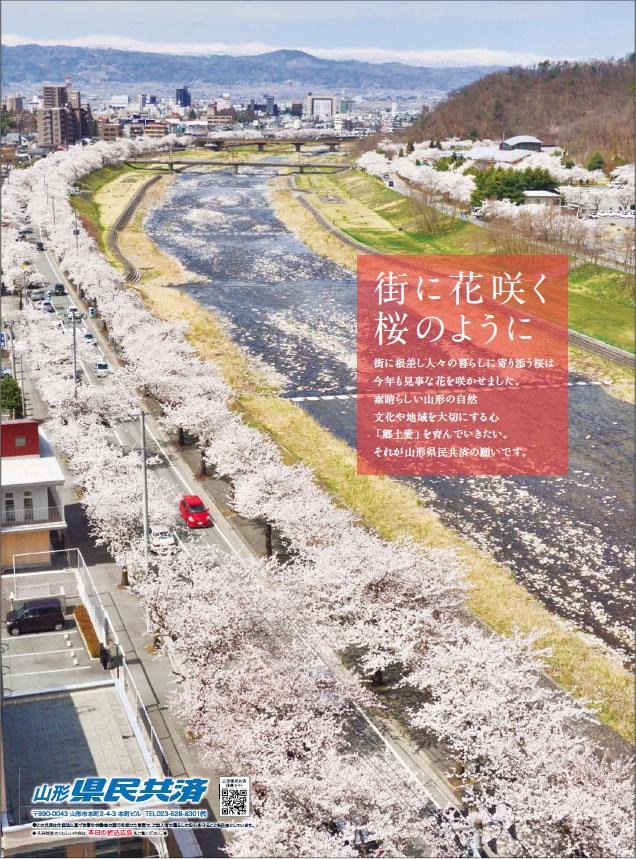 山形県民共済|街に花咲く 桜のように